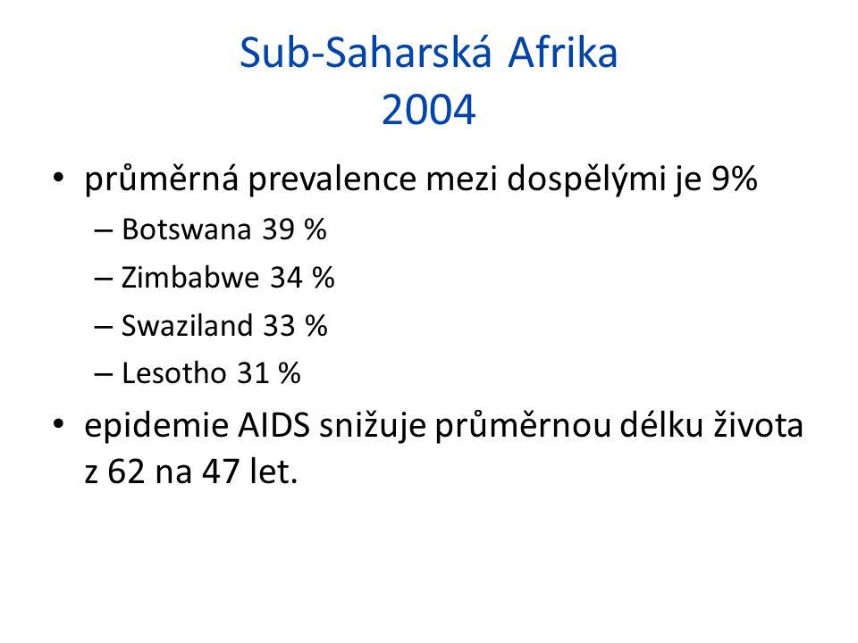 Sub-Saharská Afrika 2004 průměrná prevalence mezi dospělými je 9%