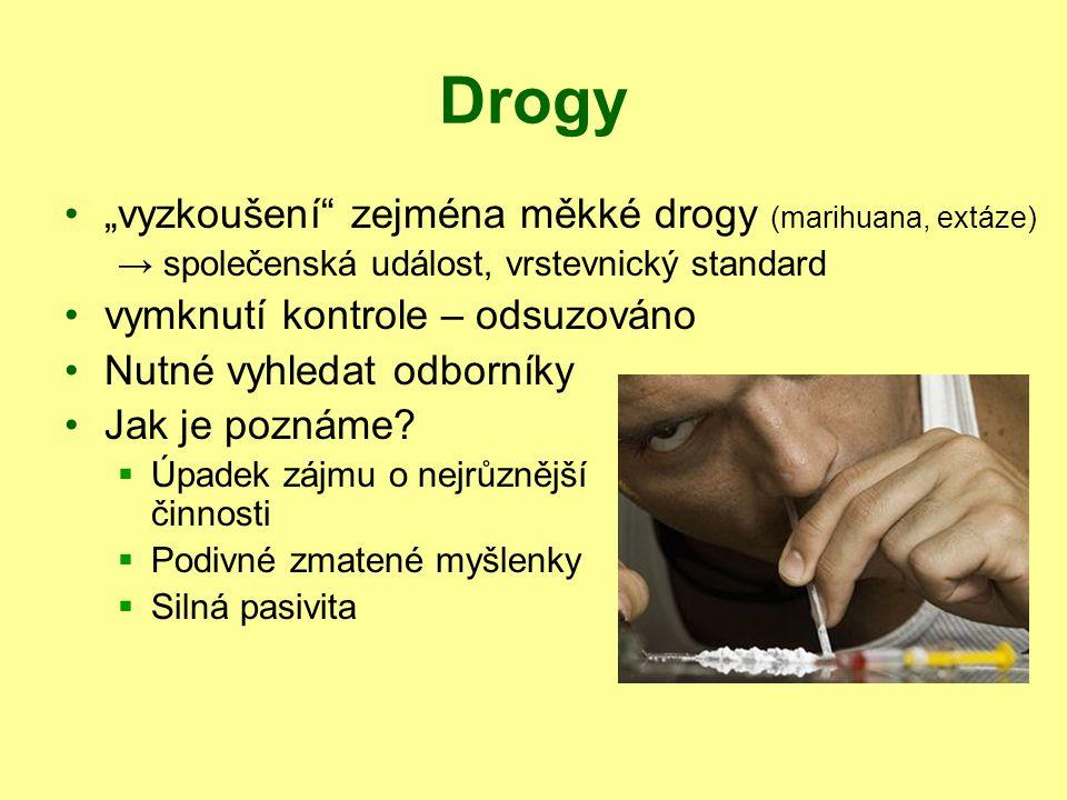 """Drogy """"vyzkoušení zejména měkké drogy (marihuana, extáze)"""