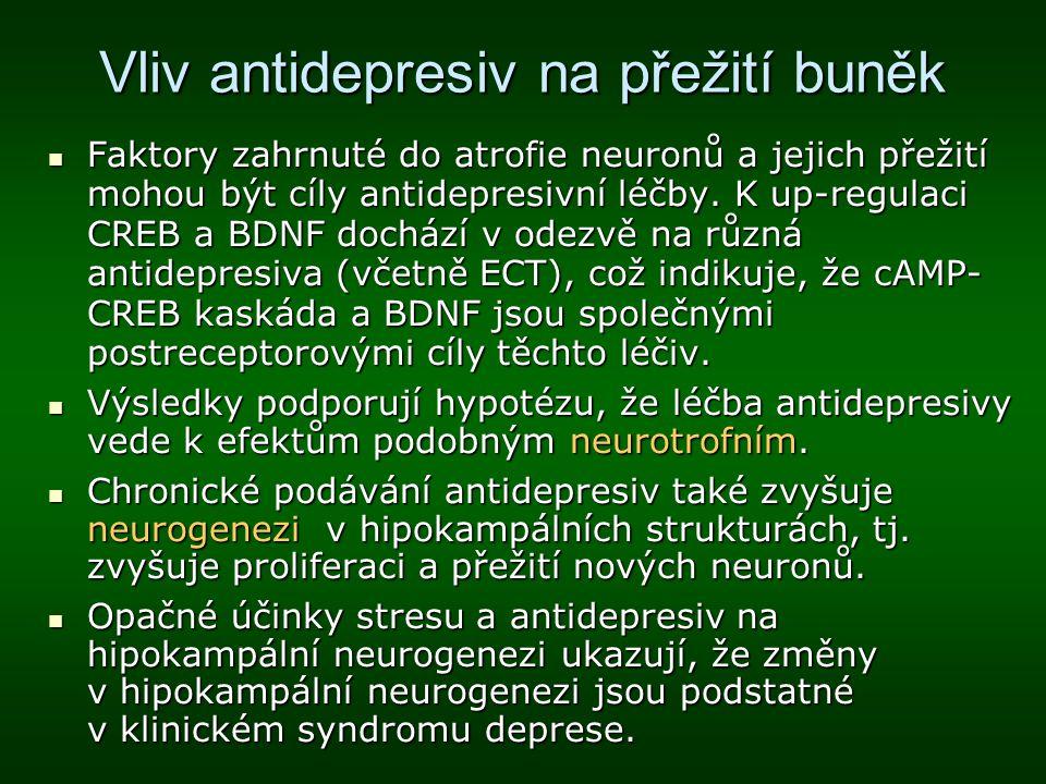 Vliv antidepresiv na přežití buněk
