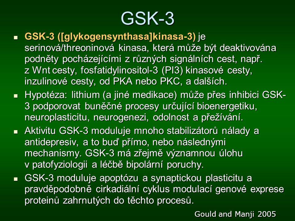GSK-3
