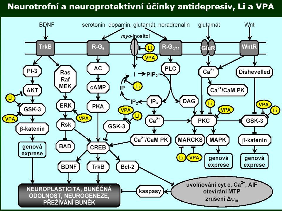 Neurotrofní a neuroprotektivní účinky antidepresiv, Li a VPA