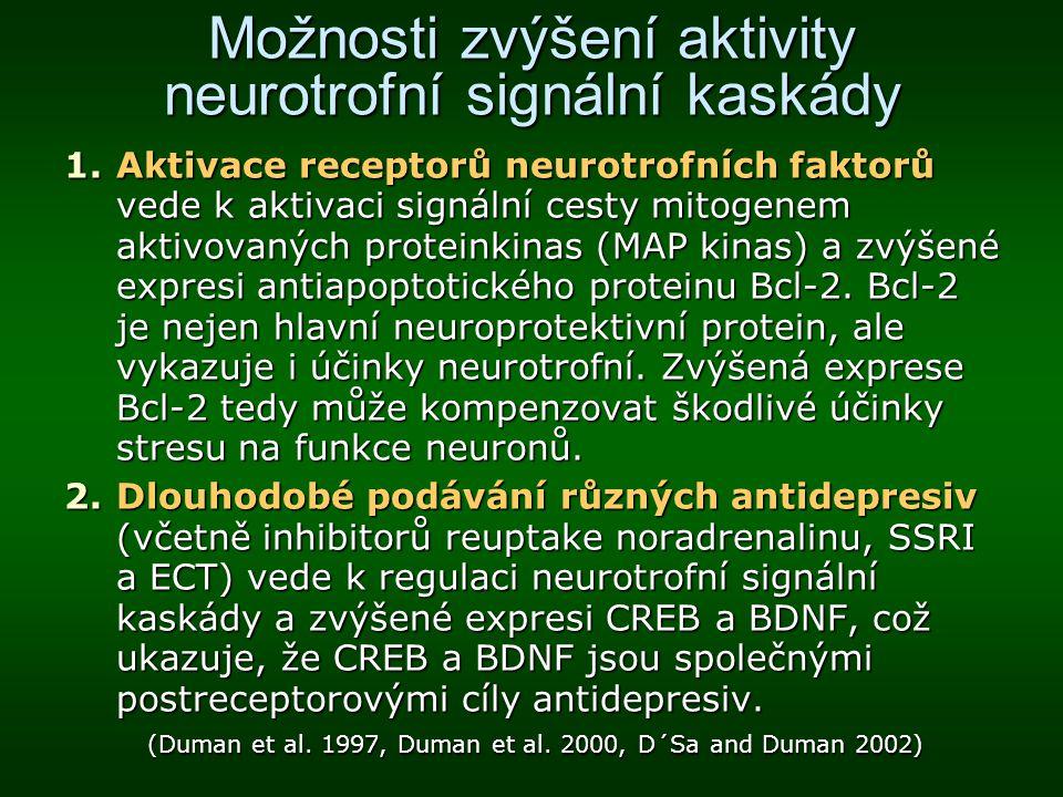 Možnosti zvýšení aktivity neurotrofní signální kaskády