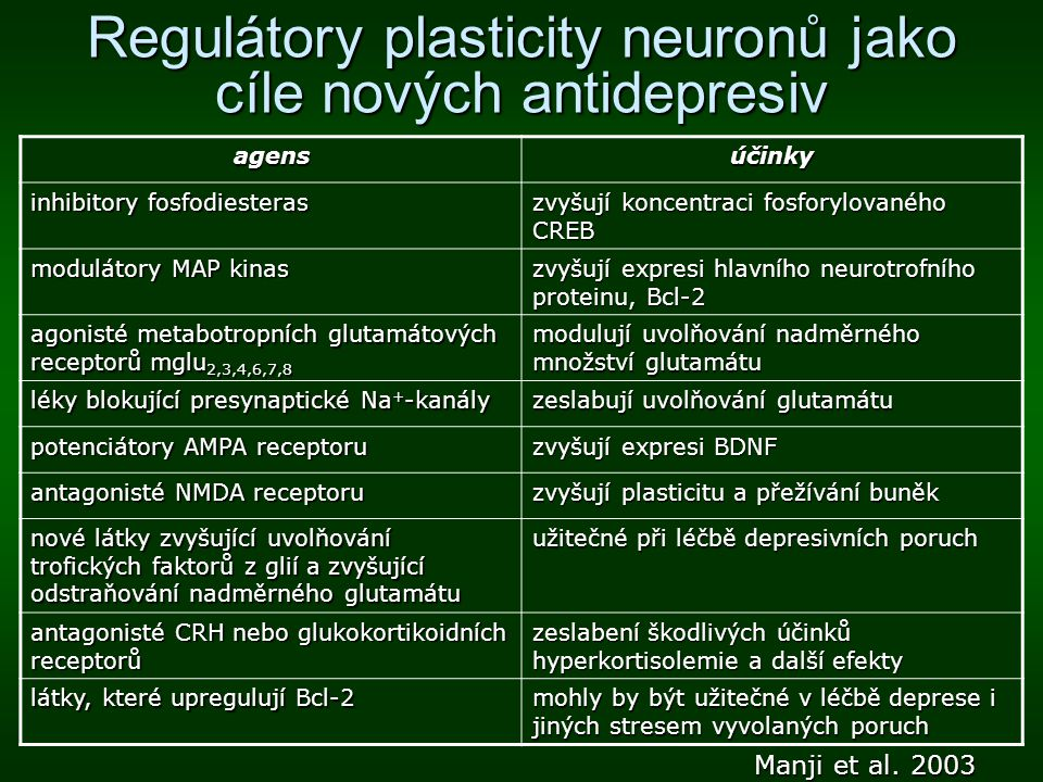 Regulátory plasticity neuronů jako cíle nových antidepresiv