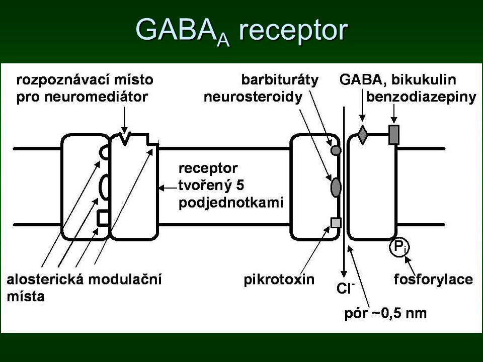 GABAA receptor