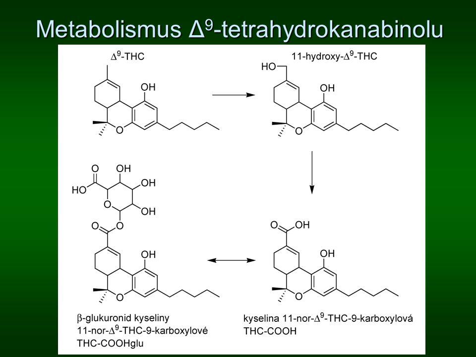 Metabolismus Δ9-tetrahydrokanabinolu