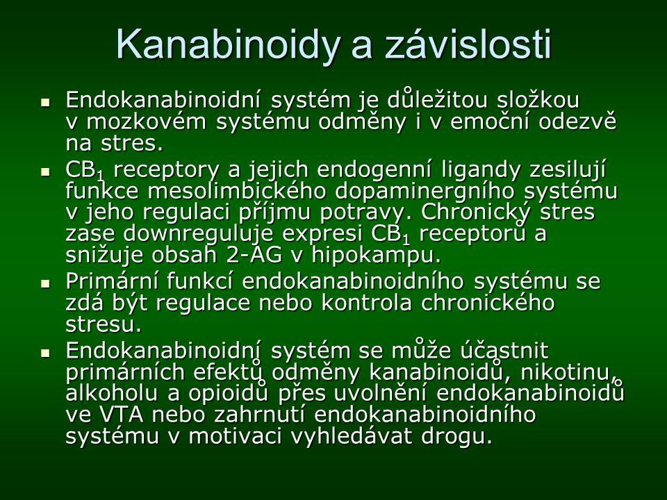 Kanabinoidy a závislosti