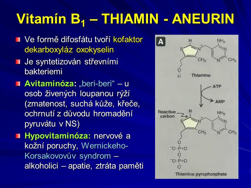 Vitamín B1 – THIAMIN - ANEURIN