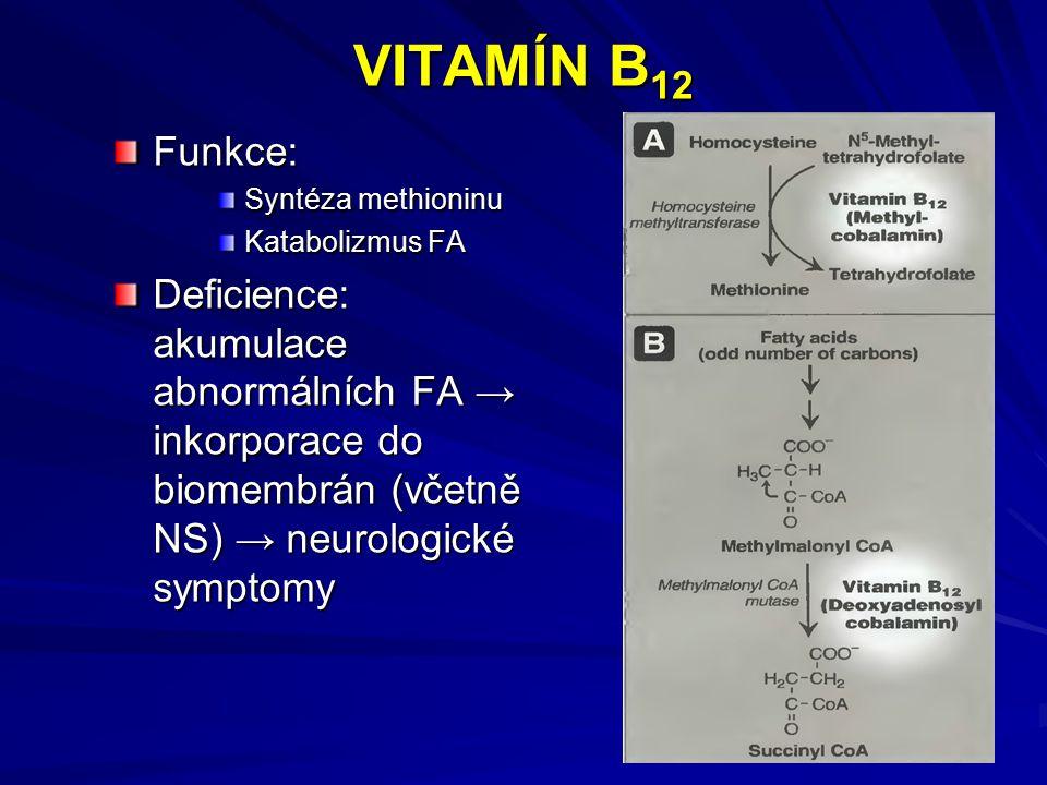 VITAMÍN B12 Funkce: Syntéza methioninu. Katabolizmus FA.
