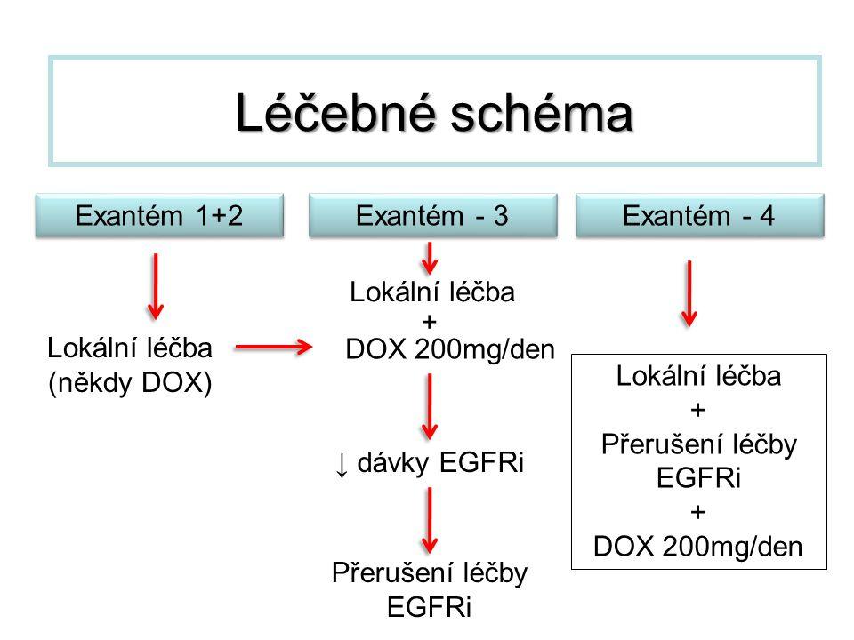 Léčebné schéma Exantém 1+2 Exantém - 3 Exantém - 4 Lokální léčba +
