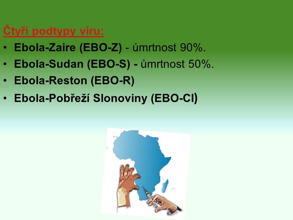 Čtyři podtypy viru: Ebola-Zaire (EBO-Z) - úmrtnost 90%. Ebola-Sudan (EBO-S) - ůmrtnost 50%. Ebola-Reston (EBO-R)
