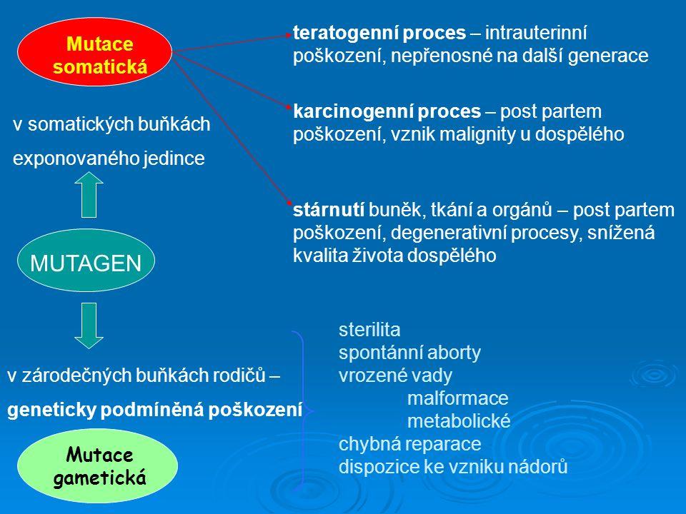 teratogenní proces – intrauterinní poškození, nepřenosné na další generace