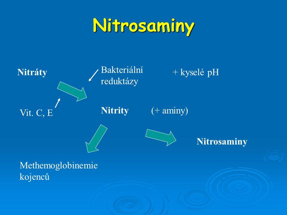 Nitrosaminy Bakteriální reduktázy Nitráty + kyselé pH Nitrity