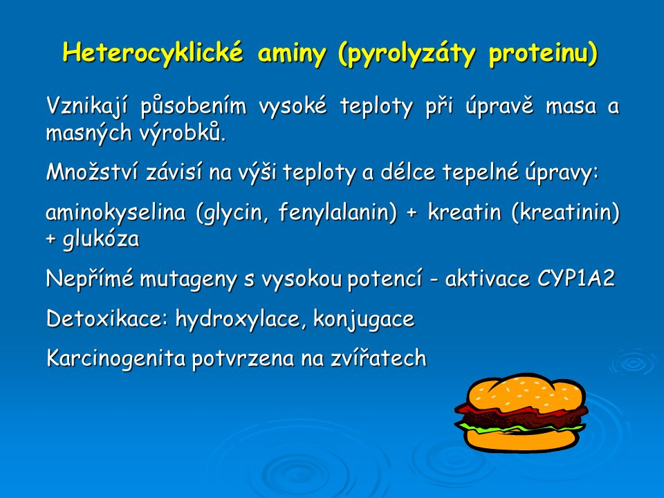 Heterocyklické aminy (pyrolyzáty proteinu)