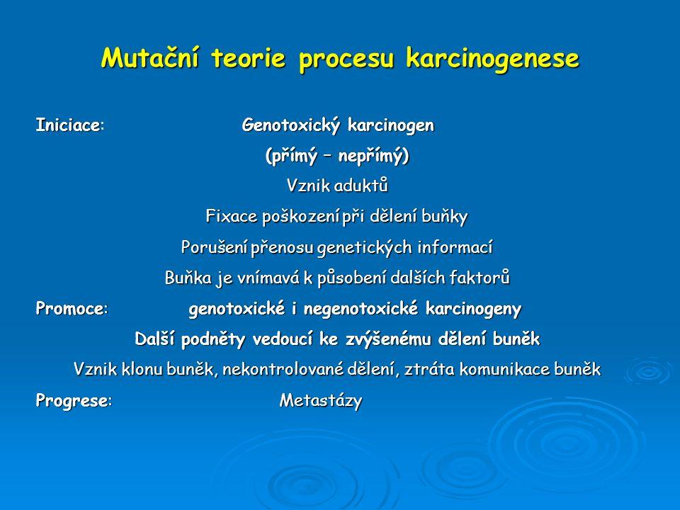 Mutační teorie procesu karcinogenese