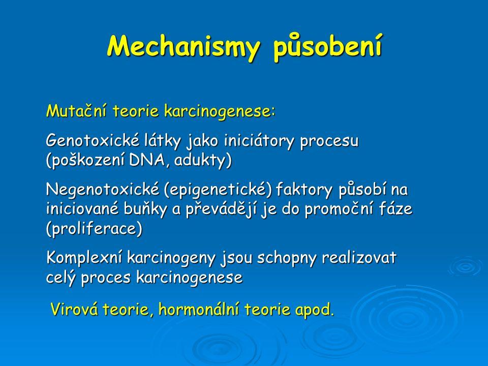 Mechanismy působení Mutační teorie karcinogenese:
