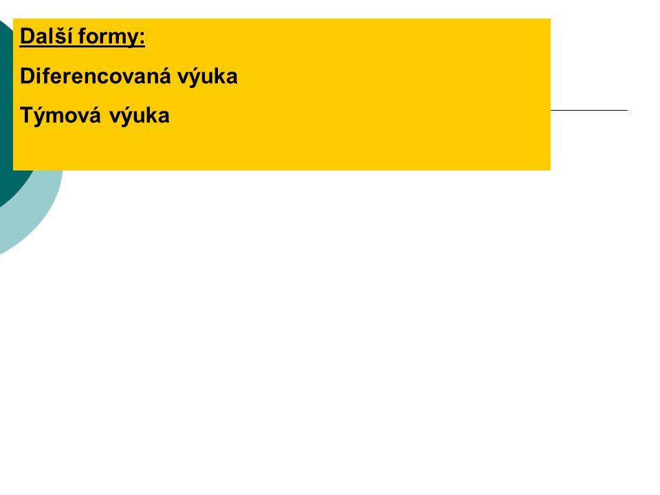 Další formy: Diferencovaná výuka Týmová výuka