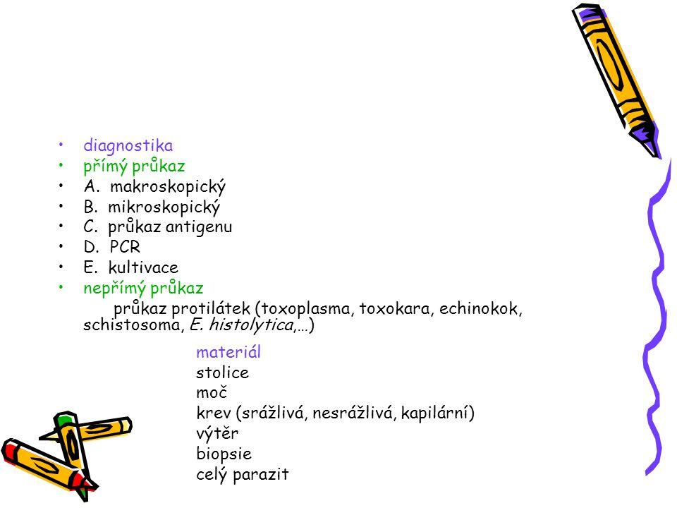 diagnostika přímý průkaz. A. makroskopický. B. mikroskopický. C. průkaz antigenu. D. PCR. E. kultivace.