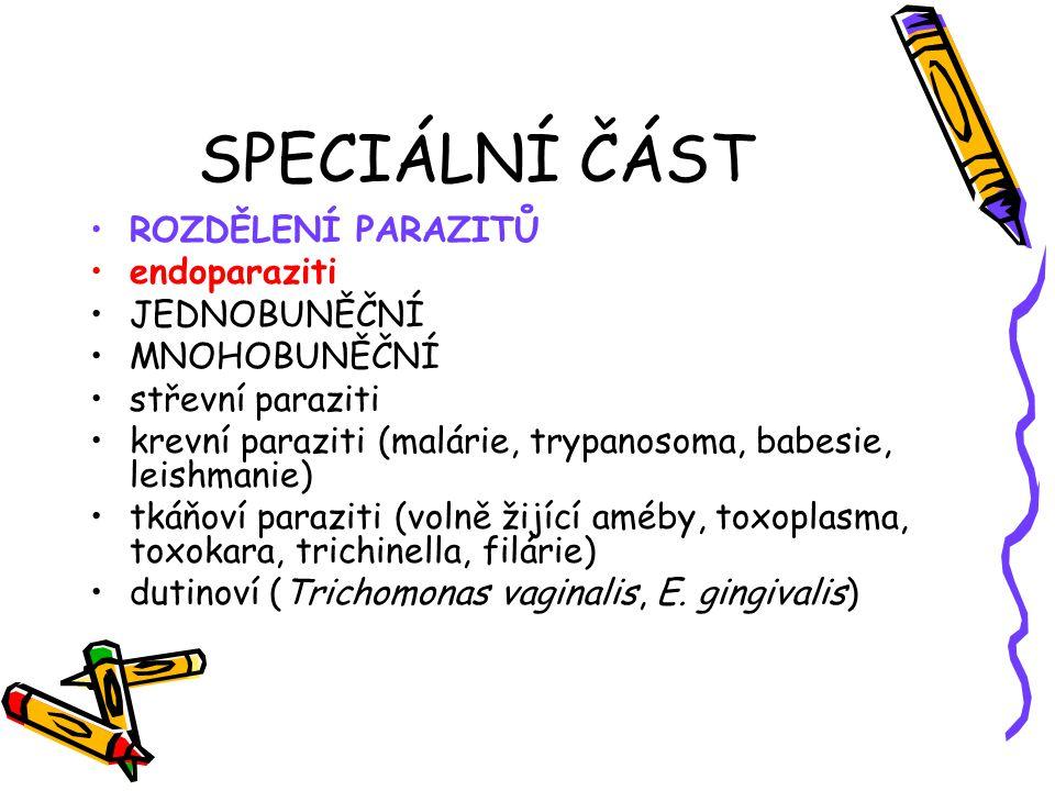 SPECIÁLNÍ ČÁST ROZDĚLENÍ PARAZITŮ endoparaziti JEDNOBUNĚČNÍ