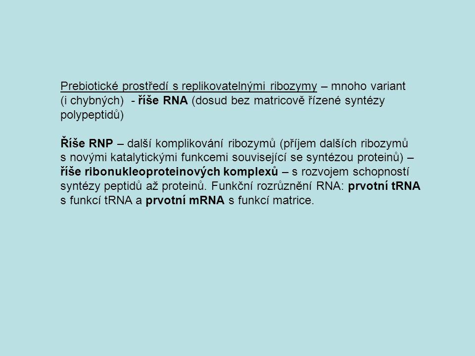 Prebiotické prostředí s replikovatelnými ribozymy – mnoho variant
