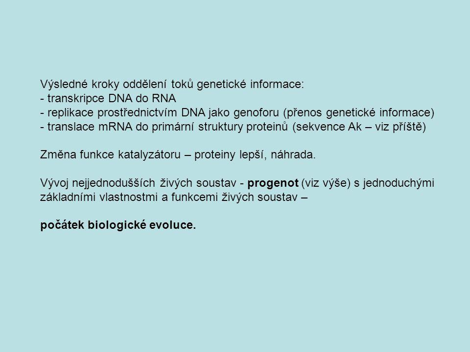 Výsledné kroky oddělení toků genetické informace: