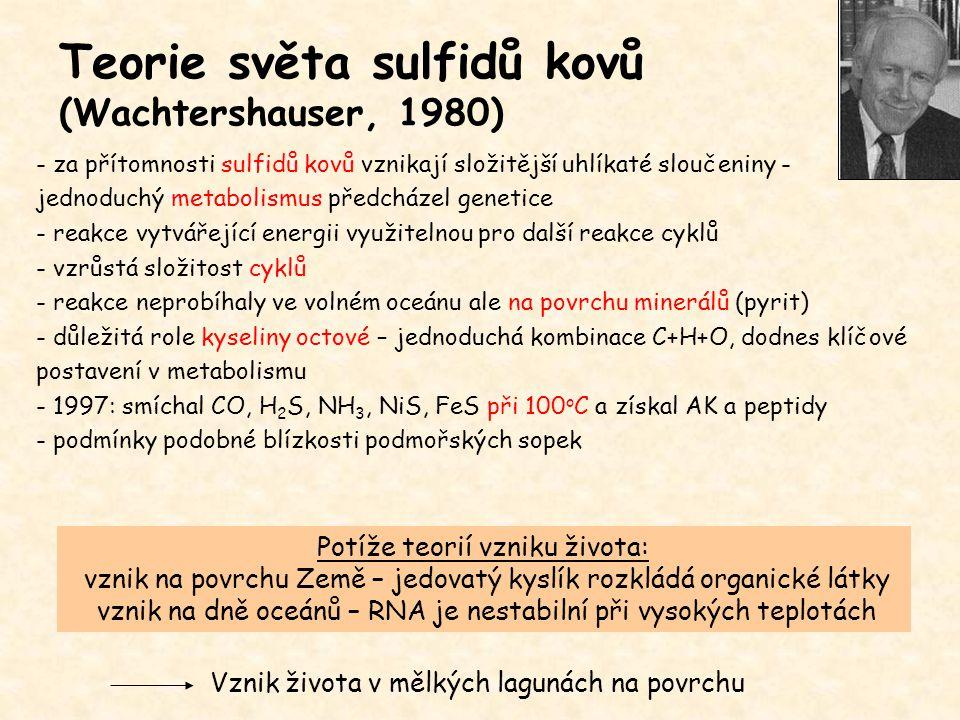 Teorie světa sulfidů kovů (Wachtershauser, 1980)