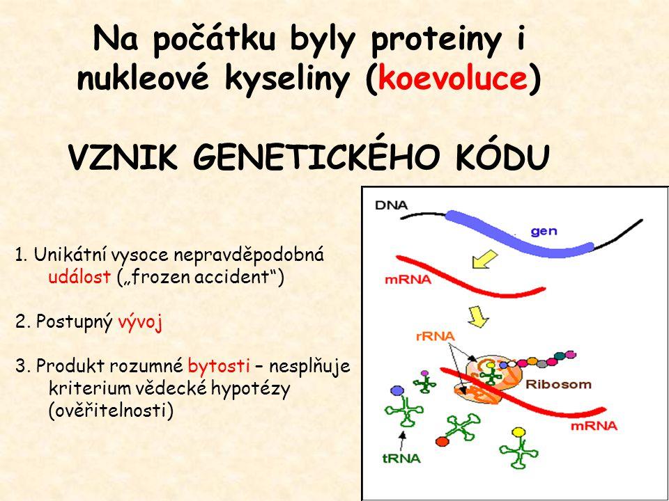 Na počátku byly proteiny i nukleové kyseliny (koevoluce)