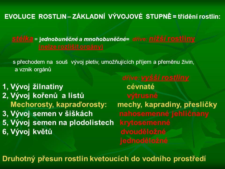 EVOLUCE ROSTLIN – ZÁKLADNÍ VÝVOJOVÉ STUPNĚ = třídění rostlin: