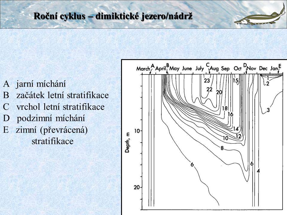 Roční cyklus – dimiktické jezero/nádrž