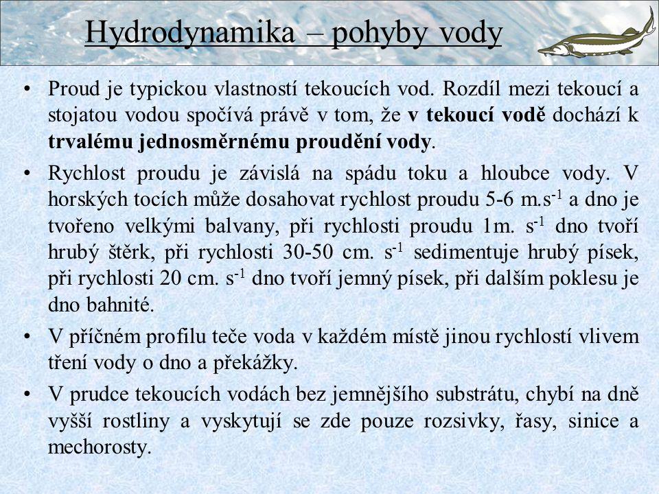Hydrodynamika – pohyby vody