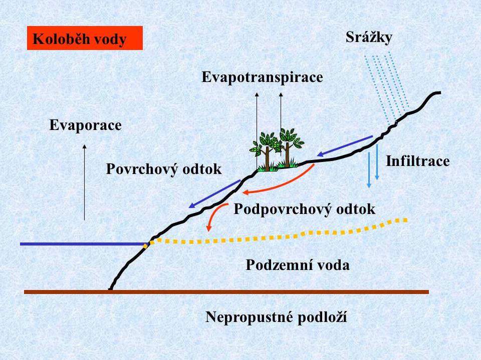 Koloběh vody Srážky. Evapotranspirace. Evaporace. Infiltrace. Povrchový odtok. Podpovrchový odtok.