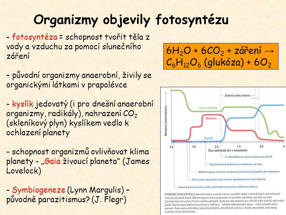Organizmy objevily fotosyntézu