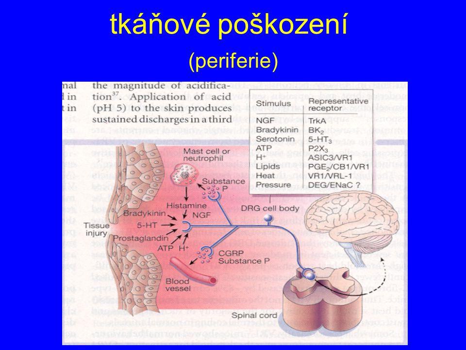 tkáňové poškození (periferie)
