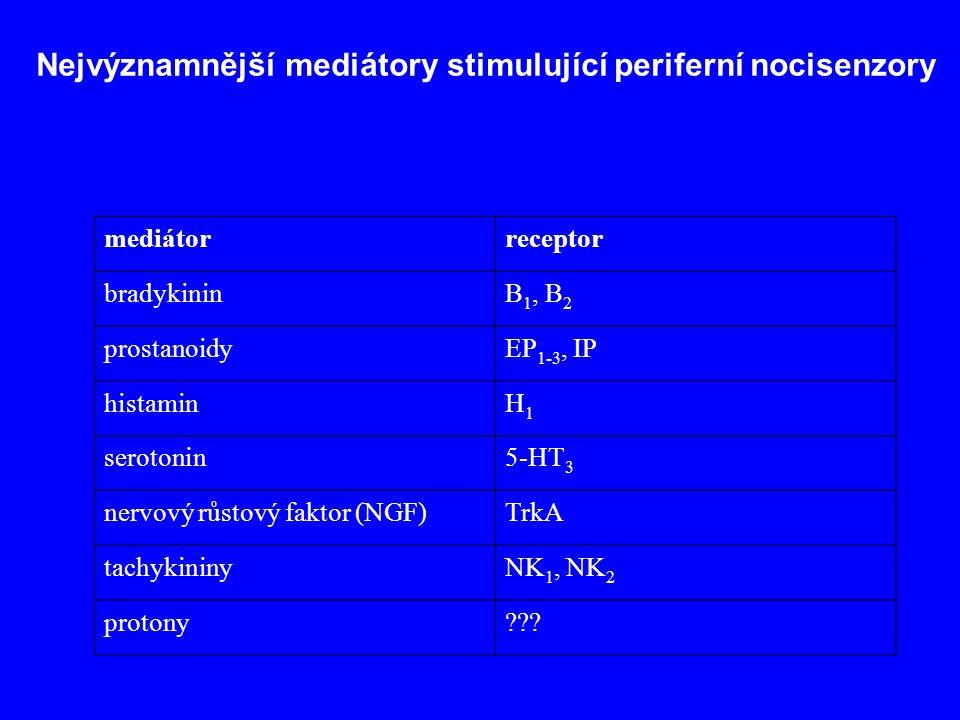 Nejvýznamnější mediátory stimulující periferní nocisenzory