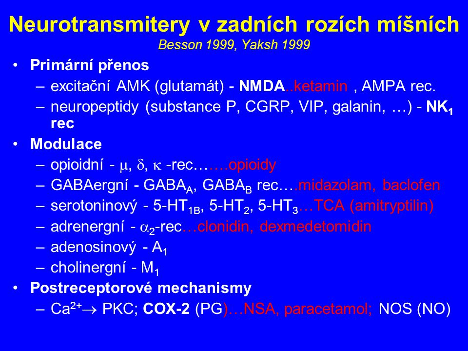Neurotransmitery v zadních rozích míšních Besson 1999, Yaksh 1999