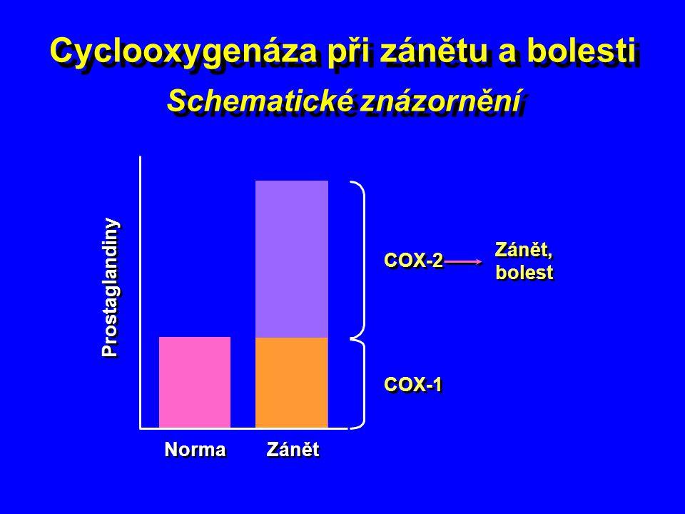 Cyclooxygenáza při zánětu a bolesti Schematické znázornění
