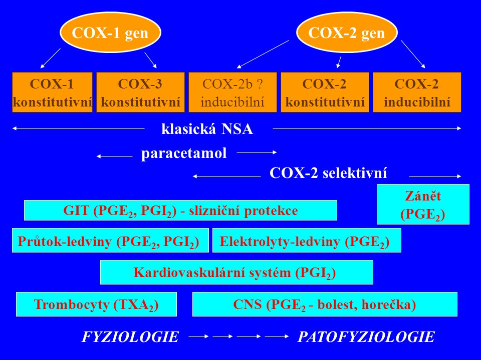 COX-1 gen COX-2 gen klasická NSA paracetamol COX-2 selektivní