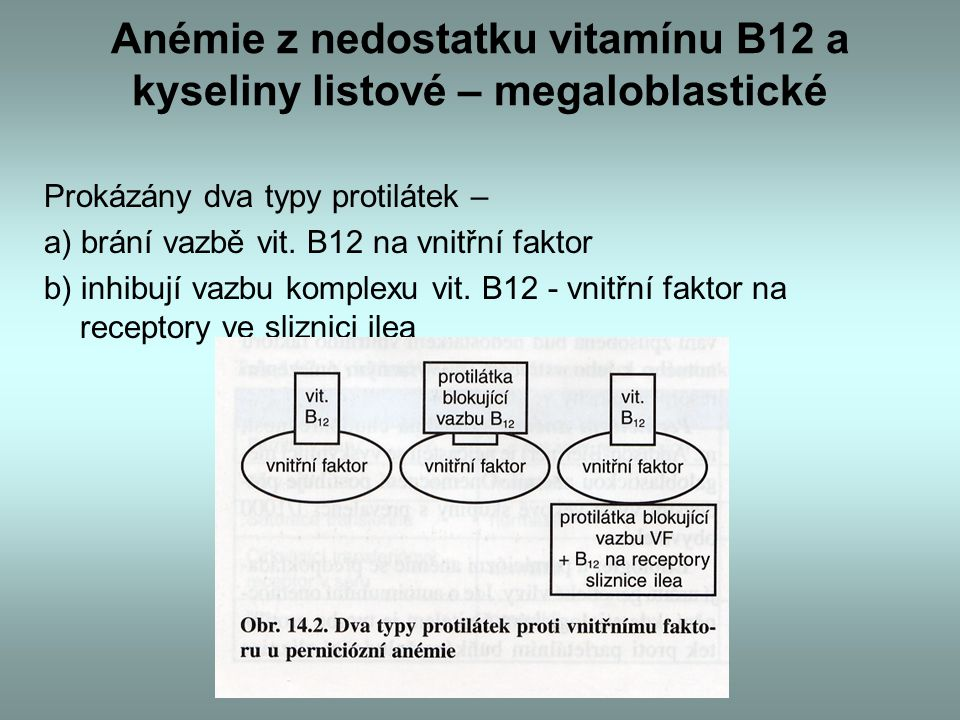 Anémie z nedostatku vitamínu B12 a kyseliny listové – megaloblastické