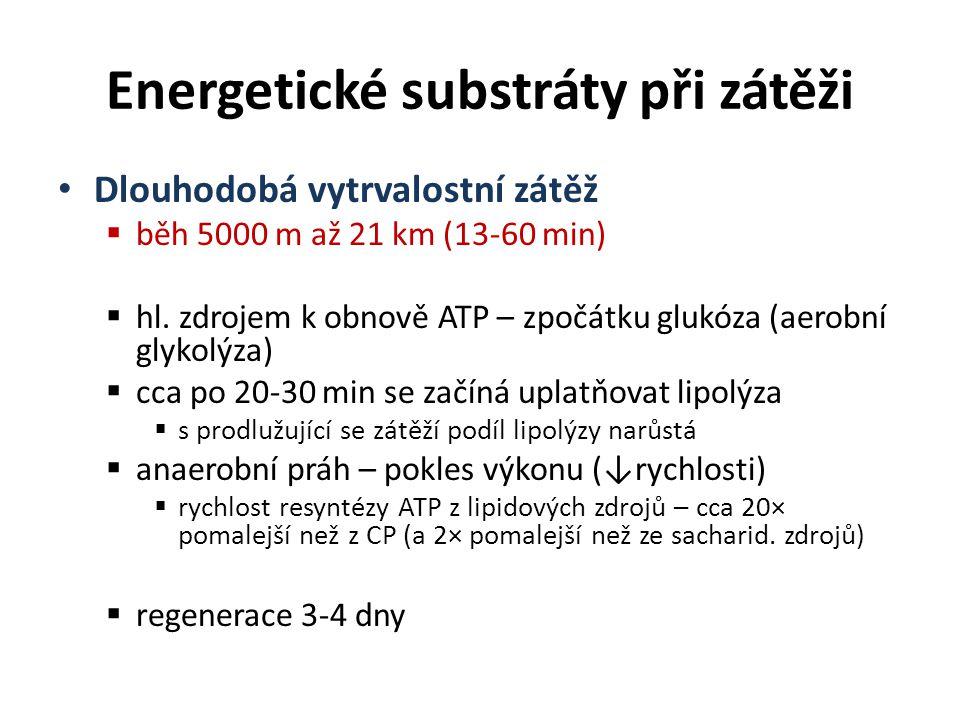 Energetické substráty při zátěži