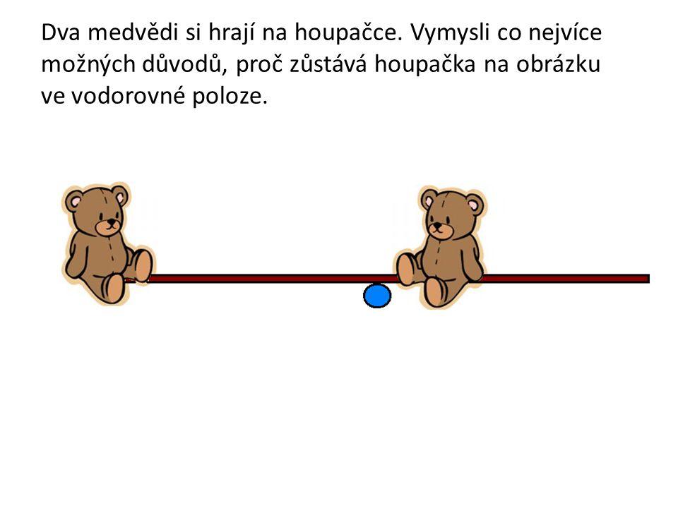 Dva medvědi si hrají na houpačce