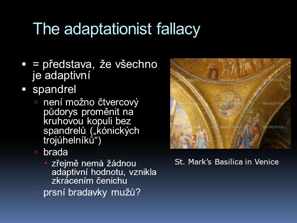 The adaptationist fallacy