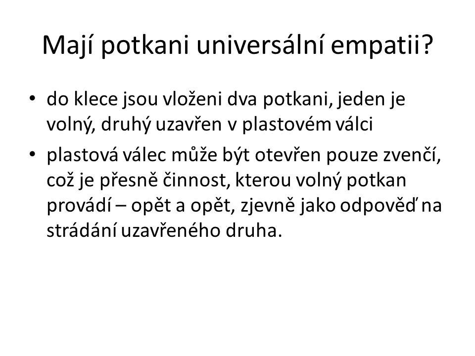 Mají potkani universální empatii