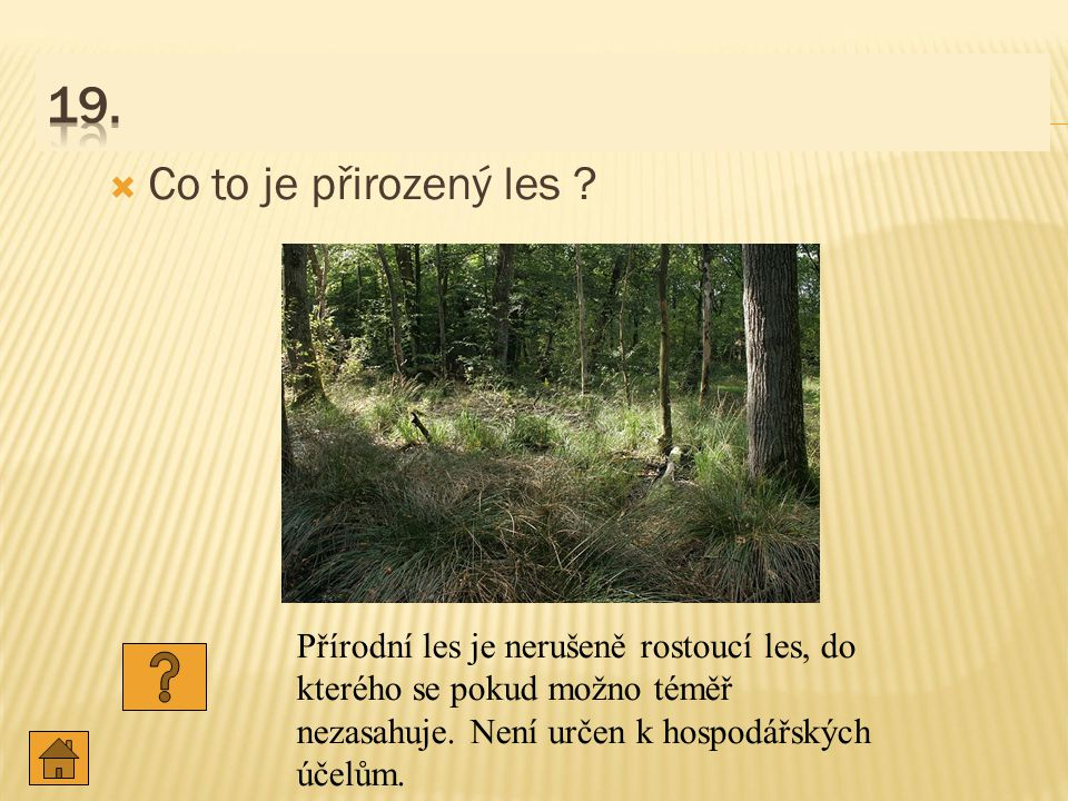19. Co to je přirozený les .