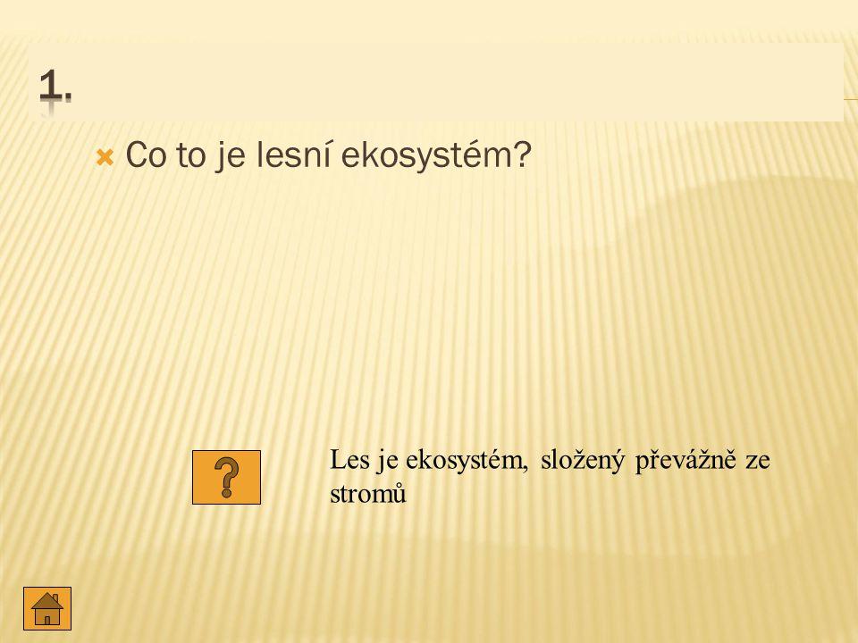 1. Co to je lesní ekosystém