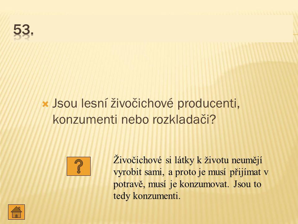 53. Jsou lesní živočichové producenti, konzumenti nebo rozkladači