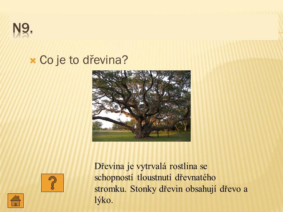 N9. Co je to dřevina. Dřevina je vytrvalá rostlina se schopností tloustnutí dřevnatého stromku.