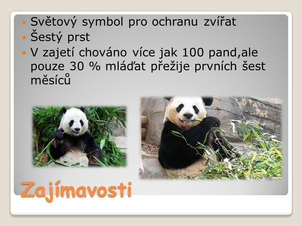 Zajímavosti Světový symbol pro ochranu zvířat Šestý prst
