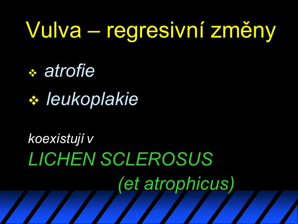 Vulva – regresivní změny