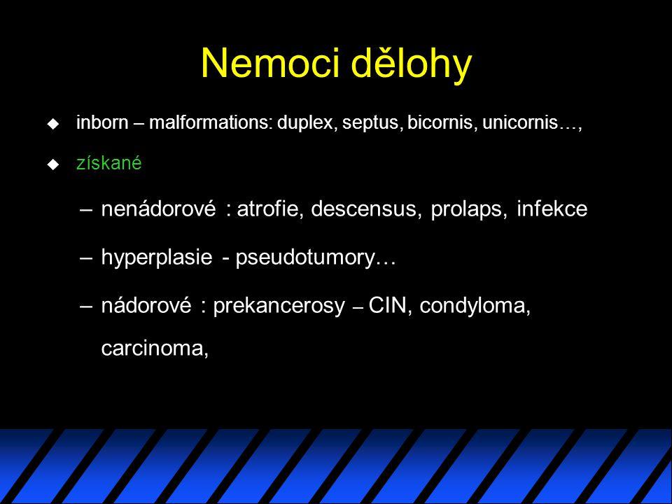 Nemoci dělohy nenádorové : atrofie, descensus, prolaps, infekce