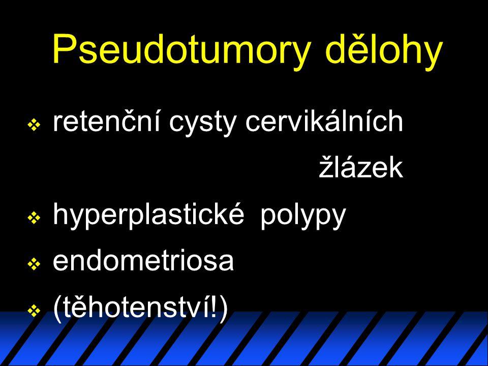 Pseudotumory dělohy retenční cysty cervikálních žlázek