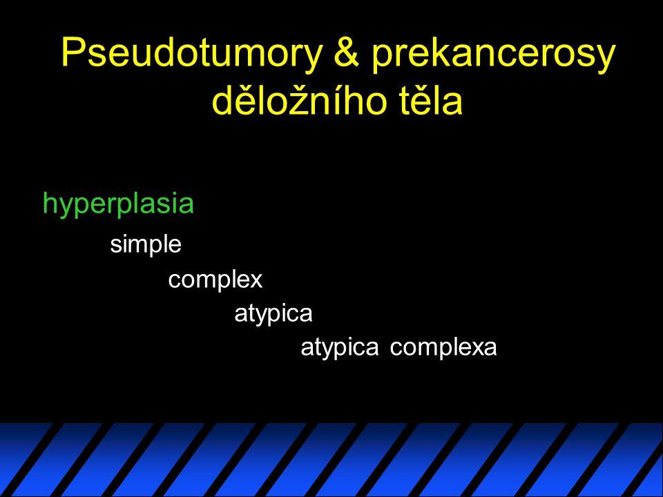 Pseudotumory & prekancerosy děložního těla